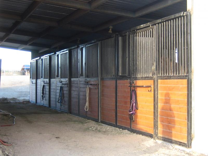 Indoor Box Stalls With Runs