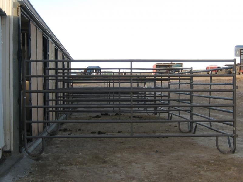 Box Stalls With Runs