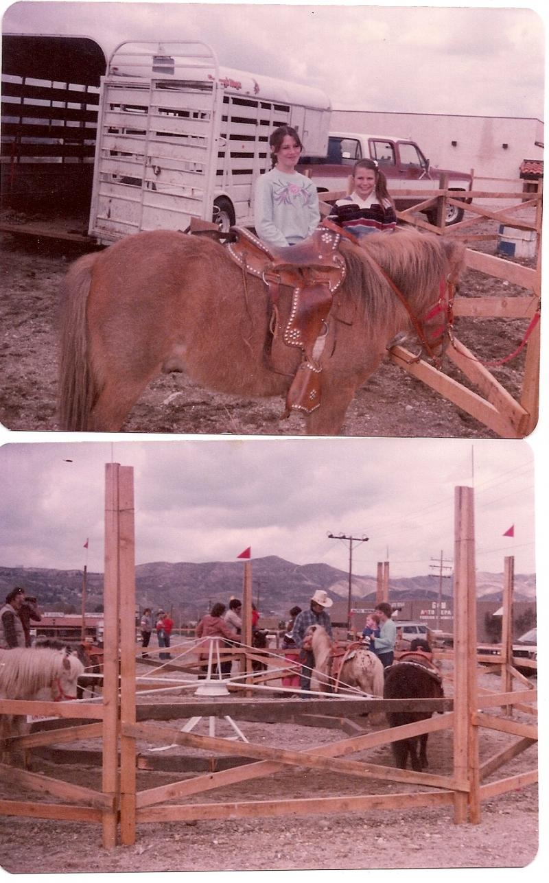 Pony Ride Business in the 1970's